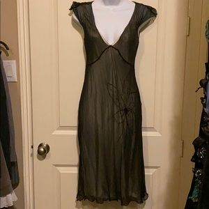 Gorgeous sheer dress by Max Studio